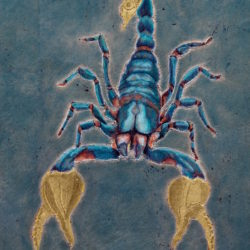 Catherine Lucas Scorpio detail of gilded carousel